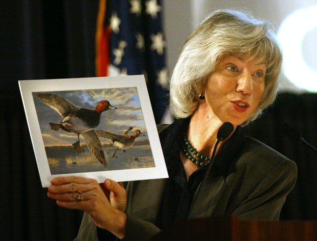 2003's Federal Duck Stamp Contest winner. Marvel at the majestic beauty of waterfowl.