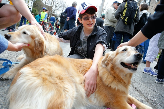 Boston marathon bombing witnesses coaxed by therapy dogs