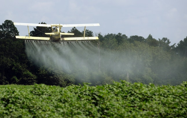 A crop duster sprays a field of crops just outside Headland, Alabama.