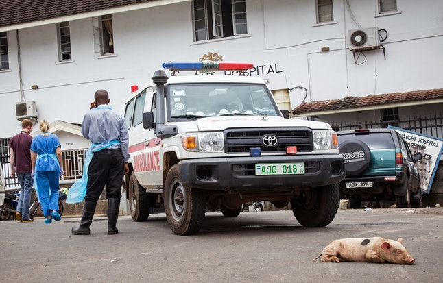 A baby pig sleeps in front of an ambulance used at the Connaught Hospital as part of their Ebola virus fleet, during a three-day lockdown to prevent the spread on the Ebola virus in Freetown, Sierra Leone, Sunday, Sept. 21,