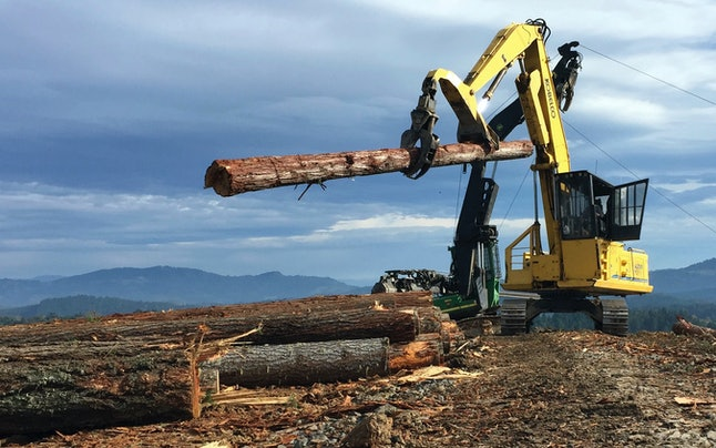 A U.S. logging operation.