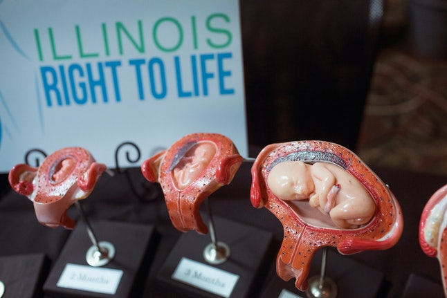 Stages of a fetus are displayed at the Illinois Right To Life a table while Republican presidential hopeful and former Arkansas Governor Mike Huckabee speaks at the  Freedom's Journal Institute for the Study of Faith and Public Policy 2015 Rise Initiative on July 31, 2015 in Tinley Park, Illinois.