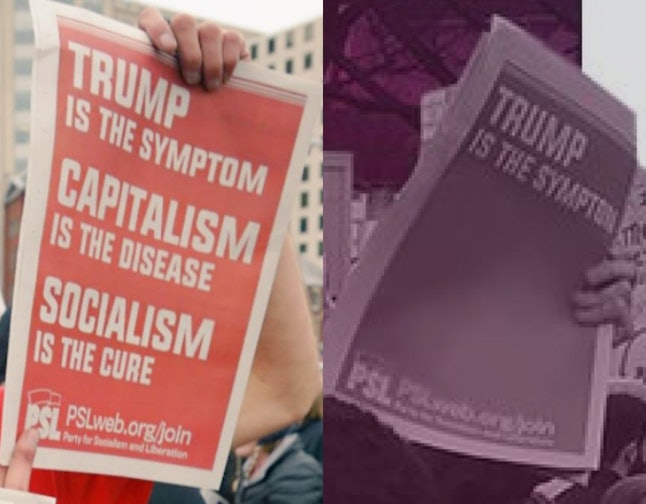 """""""Capitalism is the disease. Socialism is the cure."""""""