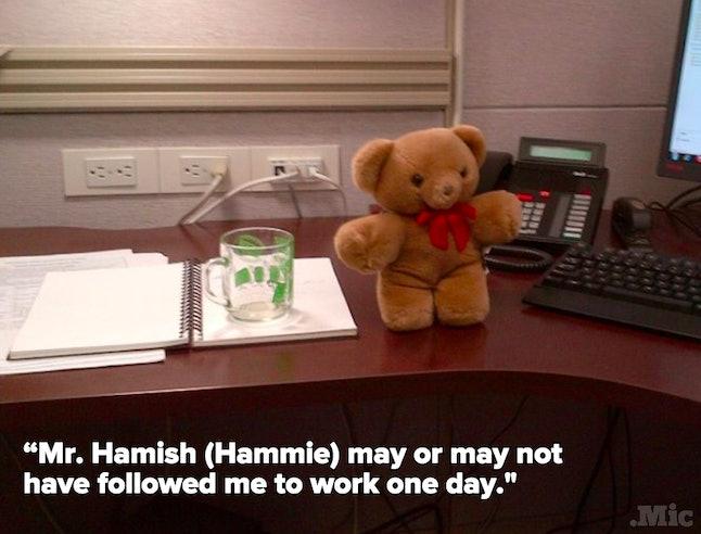 Sean's bear, Mr. Hamish (Hammie)