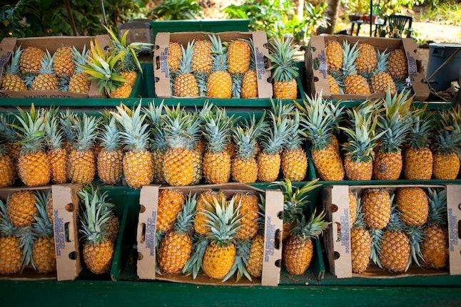 Source: Dana Edmunds/Hawaii Tourism Authority