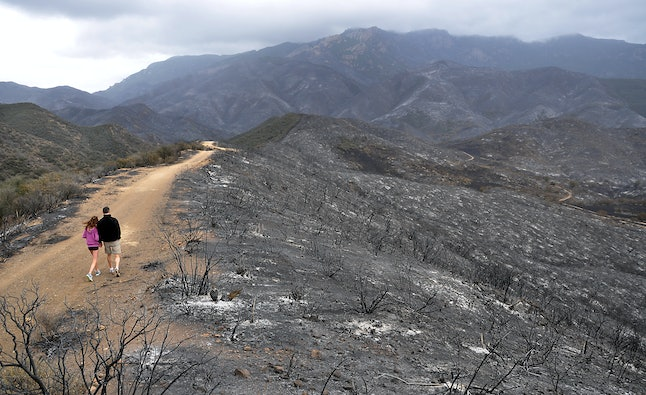 Santa Monica Mountains National Recreation Area after wildfire