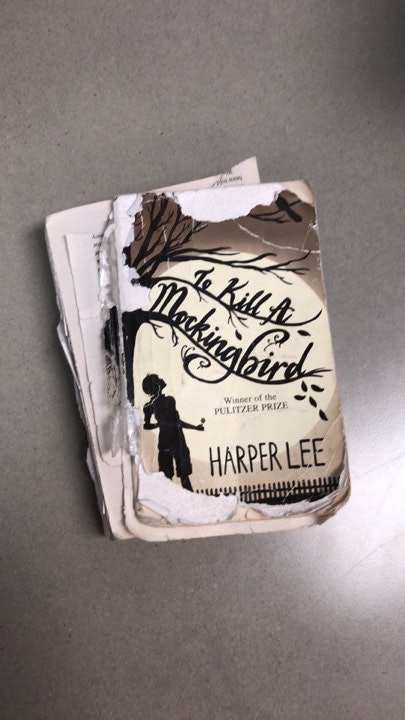 A tattered copy of To Kill a Mockingbird that eighth grade reading teacher Nichole Soyka's students use.