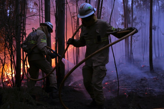 Portuguese National Republican Guard firefighters work to stop a forest fire from reaching the village of Avelar, Portugal, on June 18.