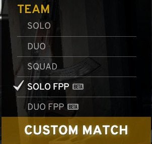 The game menu where you find the options for queues.