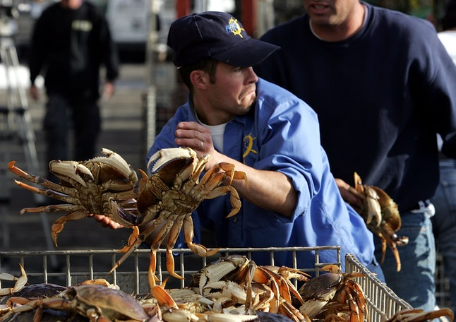A dock worker sorts freshly caught crab in a bin after being unloaded from a boat on the first day of dungeness crab season November 15, 2006 in San Francisco, California.