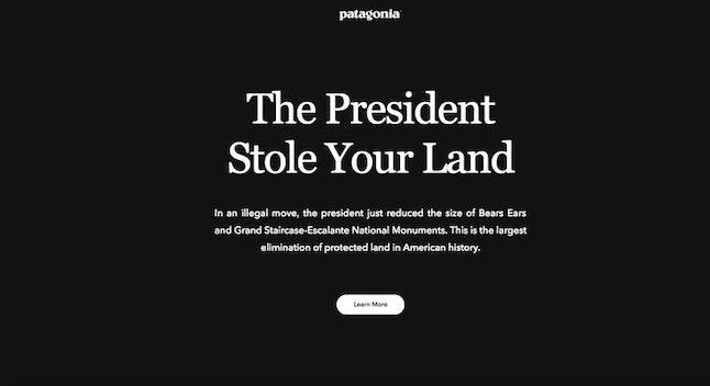 Patagonia's homepage