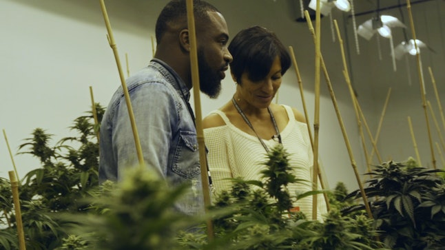 Interviewing Wanda James, the co-owner of Simply Pure Dispensary, the only black-owned legal marijuana dispenser in Denver