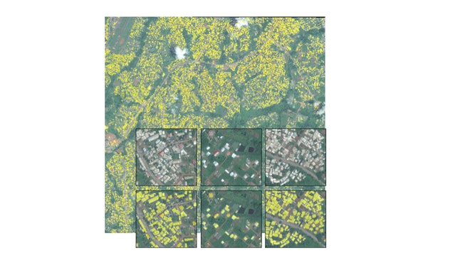 Satellite imagery of Yaounde, Cameroon shows human settlement patterns.