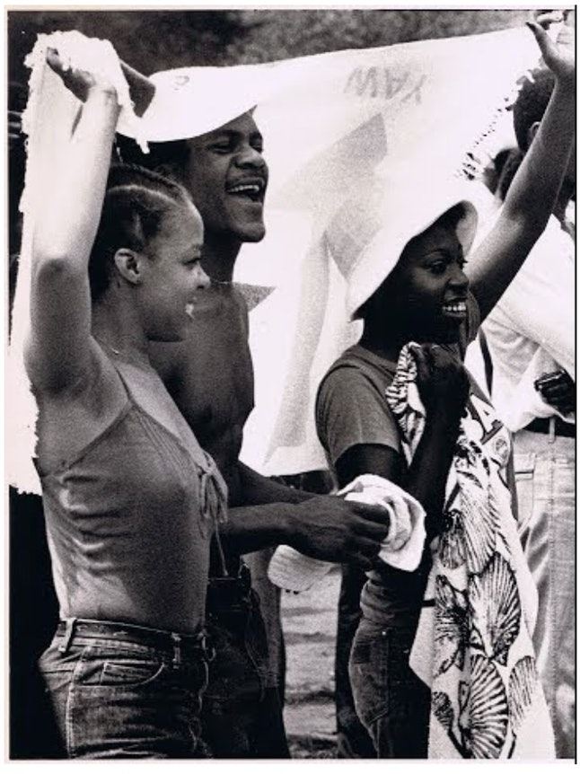 """Revelers at WJPC's annual """"Picnic in the Park"""" event at Chicago's Grant Park in July 1980"""