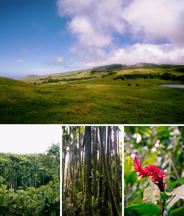 Scenes from the island of Hawaii.