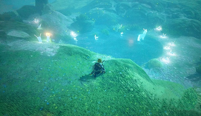 Pond near the summit of Satori Mountain in 'Zelda: Breath of the Wild'