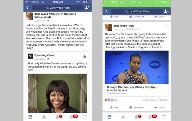 A screenshot of Jane Wood Allen's Facebook posts filled with disparaging racist remarks about Michelle Obama.