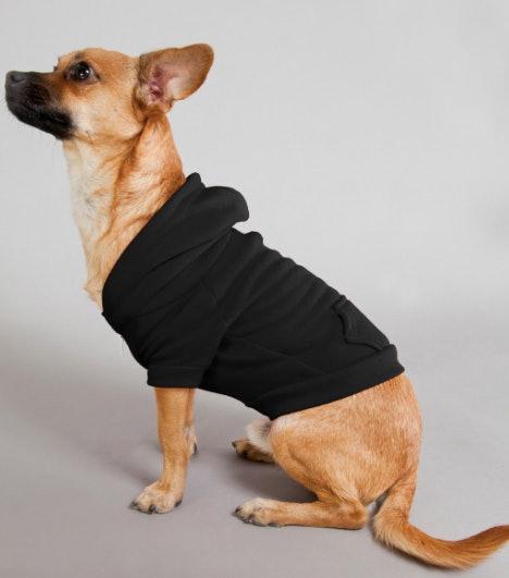 American Apparel Black Flex Fleece Dog Zip Hoodie