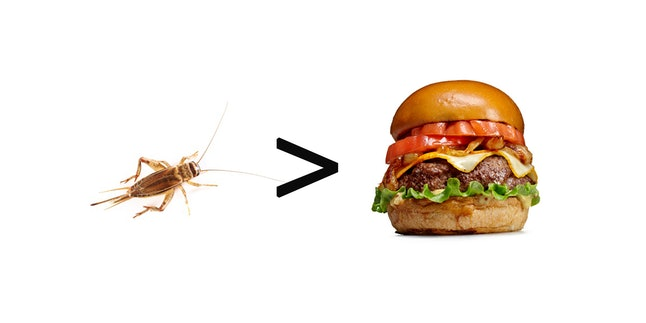Eat a cricket, save the world?