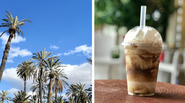 (From left): Date palms in California; a date shake from Lappert's Ice Cream