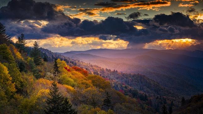 Source: Dean Fikar/Shutterstock