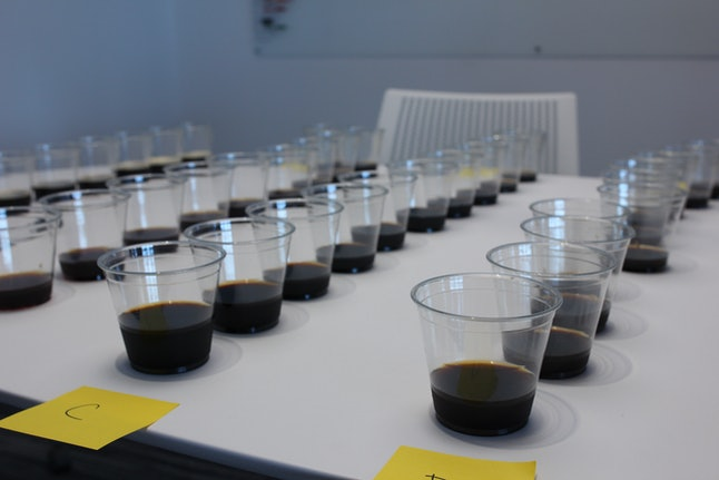 Cold brew samples lined up and ready for action