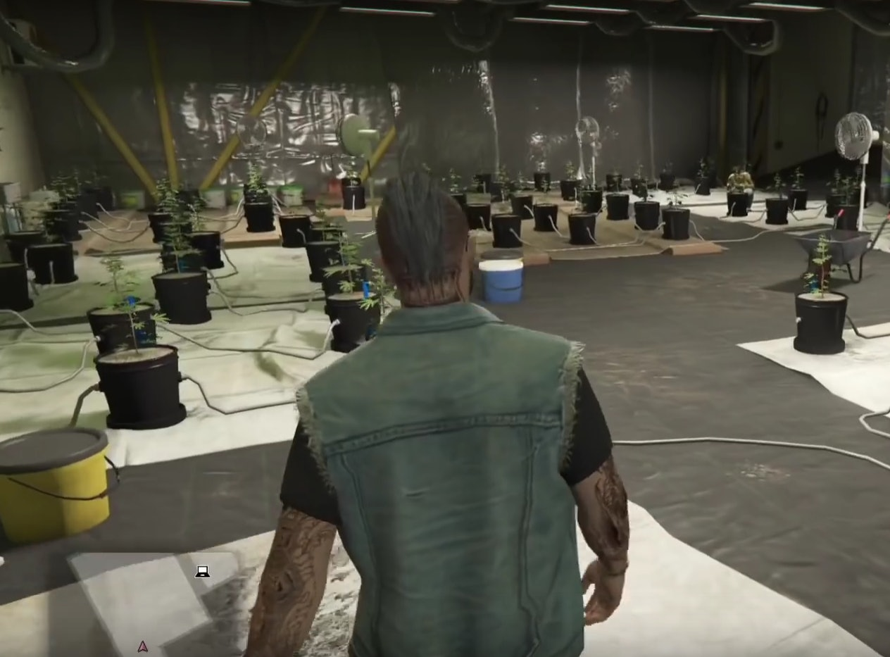 GTA Online' Weed Farm Guide and Location Tips: Worth your time in