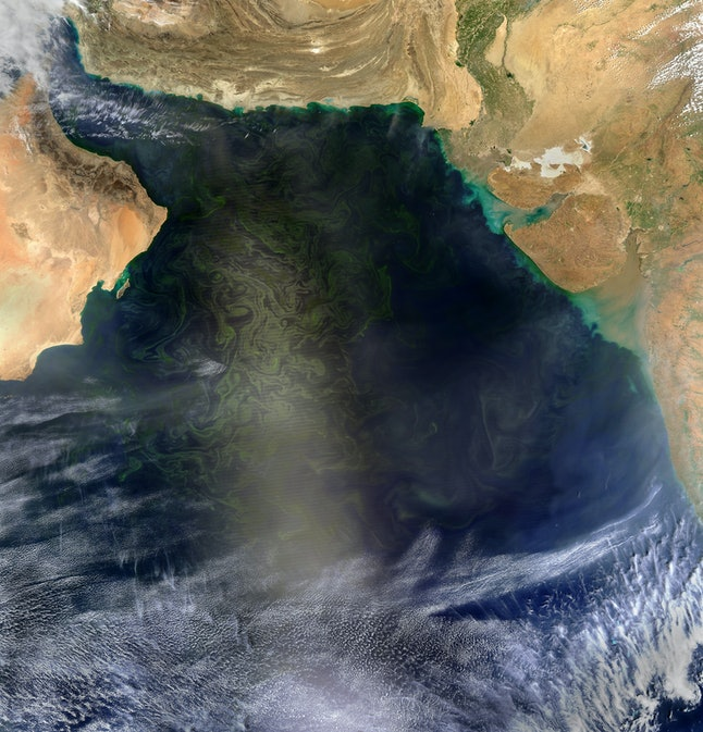 A March 2017 NASA satellite image showing algae blooms in the Arabian Sea