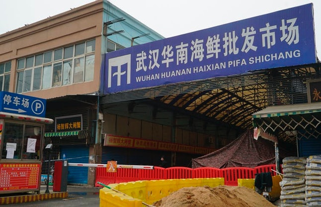 The Wuhan Huanan Wholesale Seafood Market, where the coronavirus outbreak is believed to have started, is now closed. AP Photo/Dake Kang