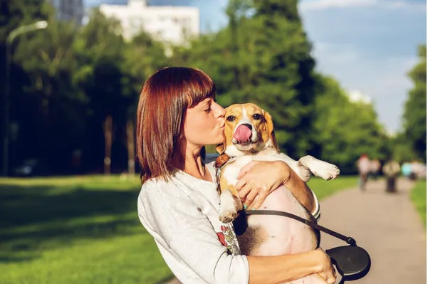Avoiding drama around leaving for work can help pets acclimate to being alone.